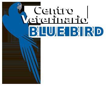 Centro Veterinario Blue Bird